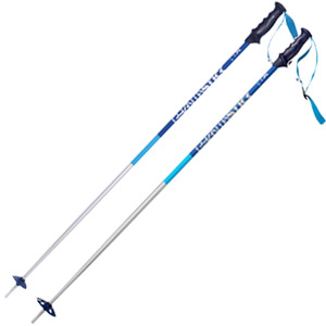 스키폴 1718 VOLKL PHANTASTICK 2 BLUE POLE 뵐클 스키폴
