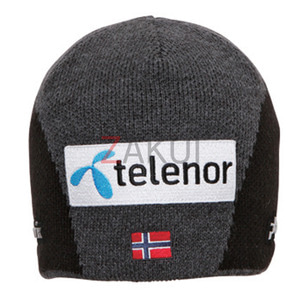 스키비니 PHENIX Norway Team Watch Cap CG