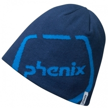 스키비니 PHENIX QD Logo Watch Cap NV