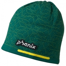 스키비니 피닉스 Japan Team Knit Cap DG