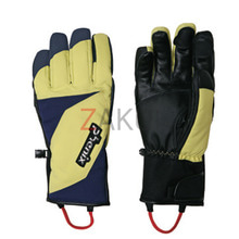 스키장갑 1718 PHENIX DEMO TEAM GLOVE-LIMNV
