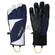 스키장갑 1718 PHENIX DEMO TEAM GLOVE-NVWT