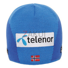 피닉스 스키비니 Norway Team Watch Cap BL